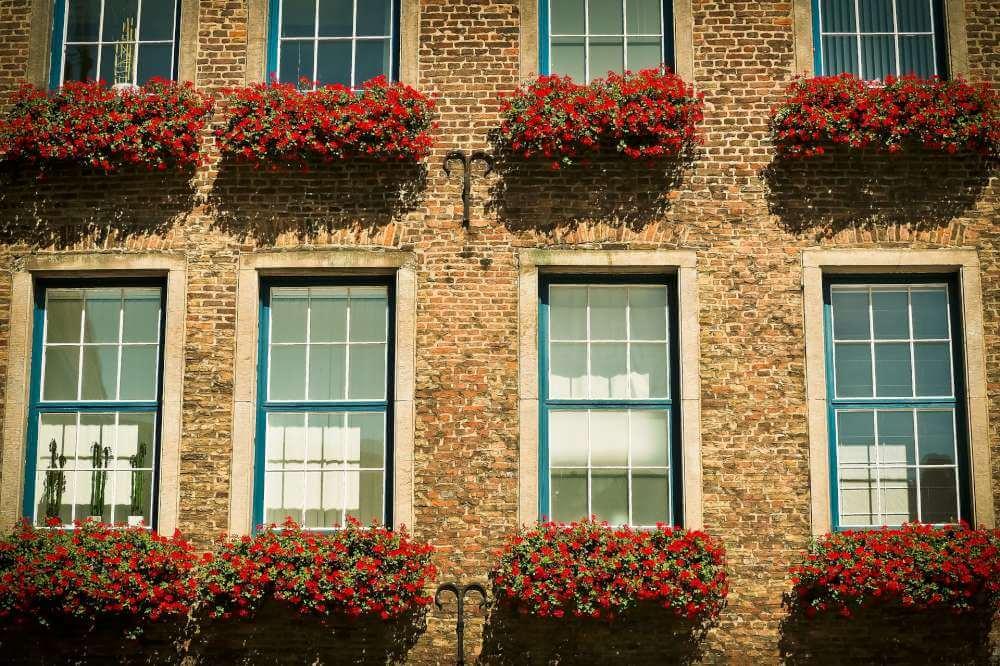 Sash Windows London (3)