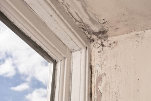 rotten-window-frame