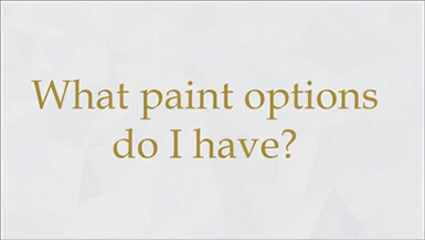 What paint options do i have?